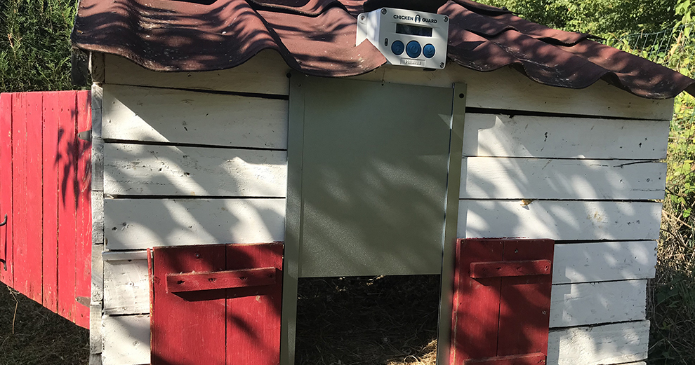 chicken-guard-installation-terminee