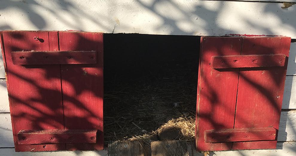 chicken-guard-test-intallation-emplacement-porte-avant
