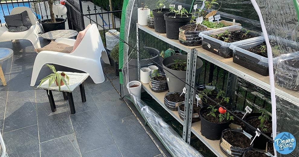 potager-connecté-semis-jardin-maison