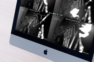 araignee-camera-objectif-image